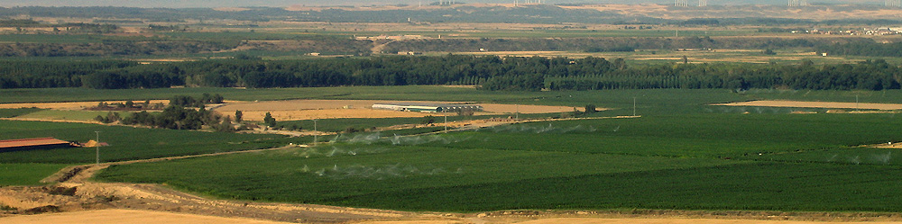 Vista campos de Murillo el Fruto